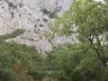 Krestnyj hod Carskij put (69)